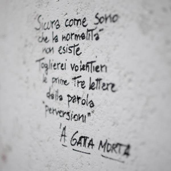 'A Gatta Morta - presso Monteverde [foto di Simona Caleo]